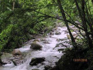 passeggiata-lungo-il-fiume
