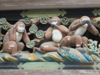 scimmie-sagge